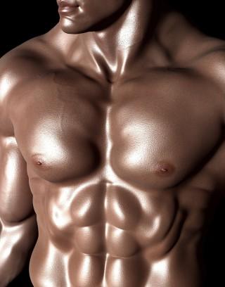 bodybuilder-331671_1280
